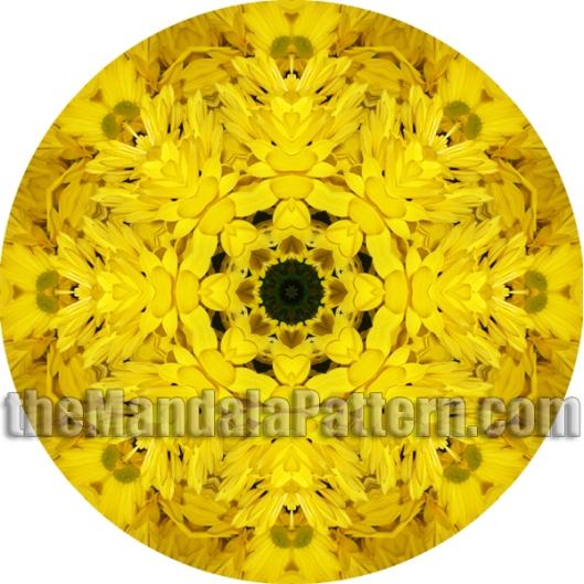 Mums Mandala