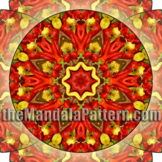 Capsicum of the Sun Mandala