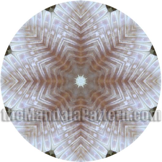 Shell Mandala 3
