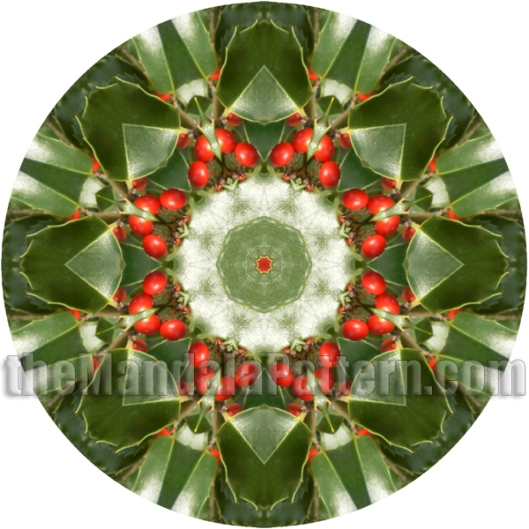 Holly Mandala
