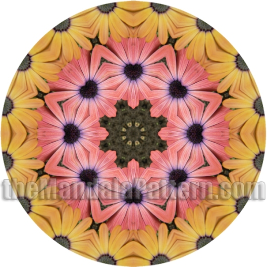 Flower Power 2 Mandala